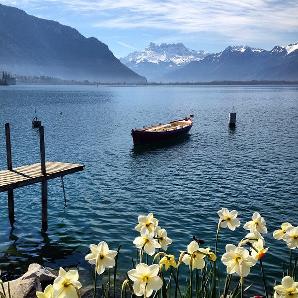 "A beautiful little walk along Lake Geneva on our way to the Montreux train station, aptly named ""Chemin Fleuri"" (flower path). This is Switzerland in full springtime glory. via Instagram http://ift.tt/1b1DGja"