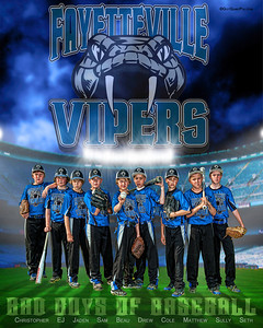 2012 Vipers