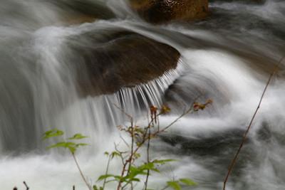 Wallace Creek, 20100425