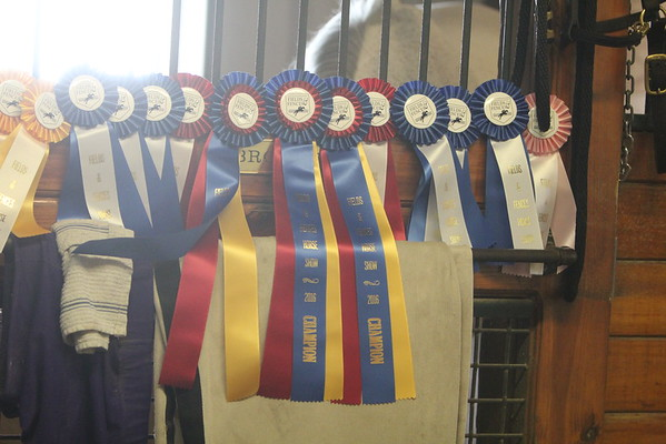 PTS Show  24-July-16