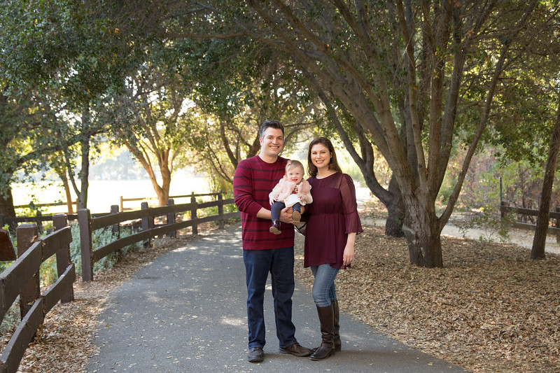 Hillis Family-4.jpg