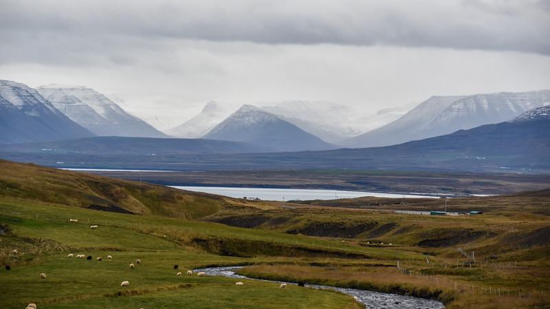 Iceland_2015_10_04_16_49_46.jpg