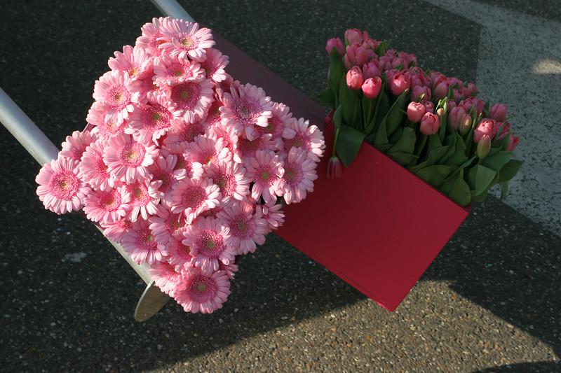 Flower Parade - 18.jpg