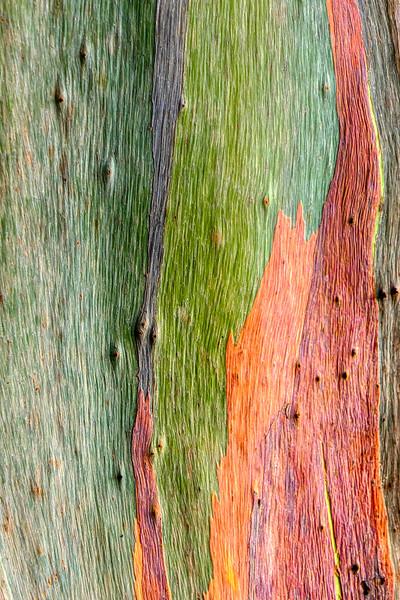 Wood Patchwork