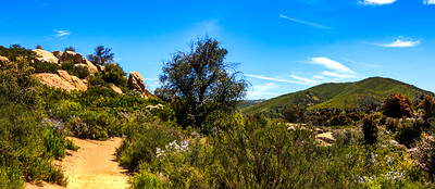 Hike - Arroyo Seco, Pine Ridge & Green Valley Falls - May 9, 2018