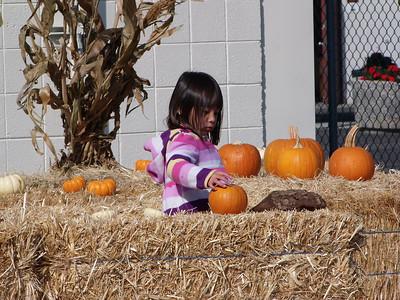 Pumpkin Patch CHA 21Oct2013