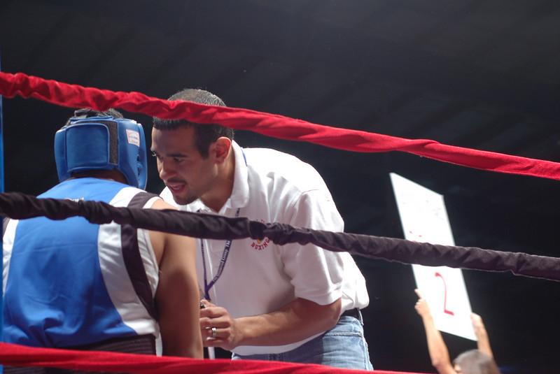 boxer3.JPG
