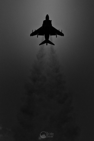 Harrier Silhouette