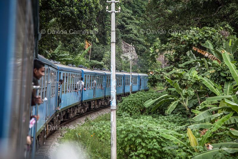 srilanka (14 di 74).jpg