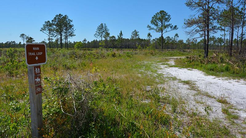 Pumpkin Hill Creek Preserve