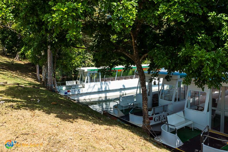 Melia-Resort-Colon-00779.jpg