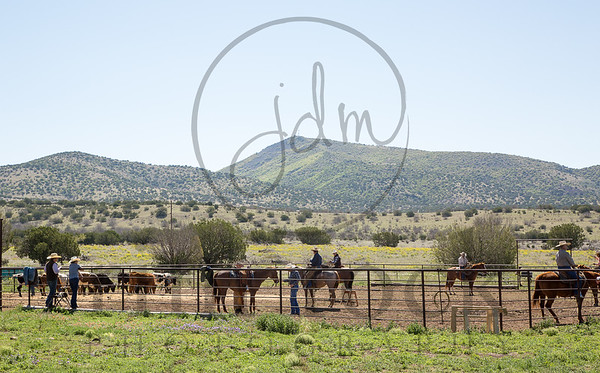 Joe Wolter Roping Clinic -April 2015