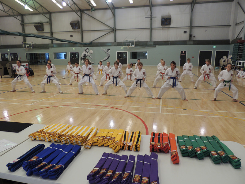 Combat Karate Grading and Course July 2013 022.JPG