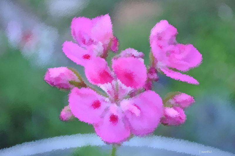 dream gardens 29 2-5-2011.jpg