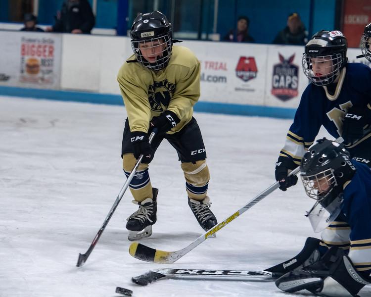 2019-Squirt Hockey-Tournament-207.jpg