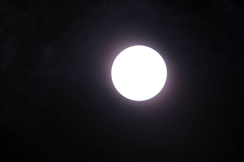 20170821Eclipse-59.jpg