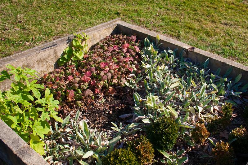 2009 Nov 22_Weir Farm_1365_edited-1.jpg