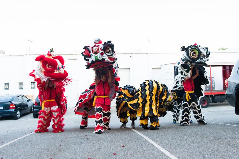 CNY 2014-31.jpg