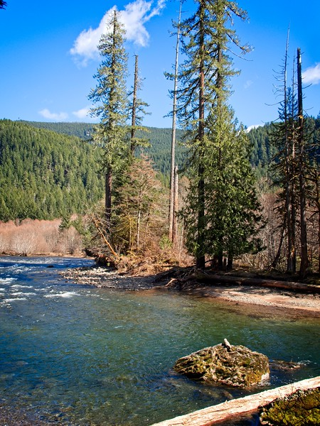 Lewis River, Lower Falls to Curly Creek.