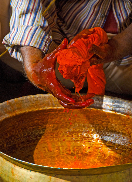 India2010-0211A-557A.jpg