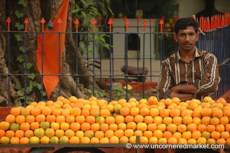 Man and Oranges: Alleppey, India