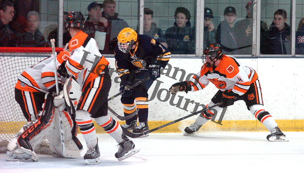 Delano Boys Hockey Section 2A Championship Game
