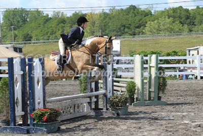 Equitation Over Fences, j12