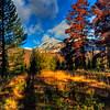 Kewuneeche Valley in Rocky Mountain National Park