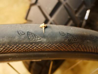 2015 Bicycle Wokring