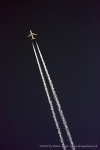 LAX 2009