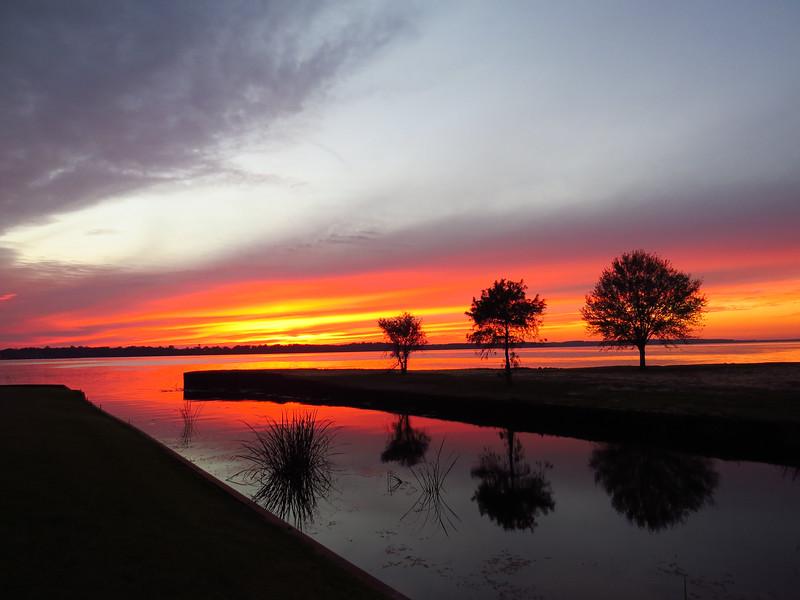 Lake Seminole COE, Eastbank Campground, Georgia (28).JPG