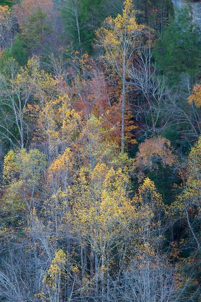 Natural bridge - Autumn colours