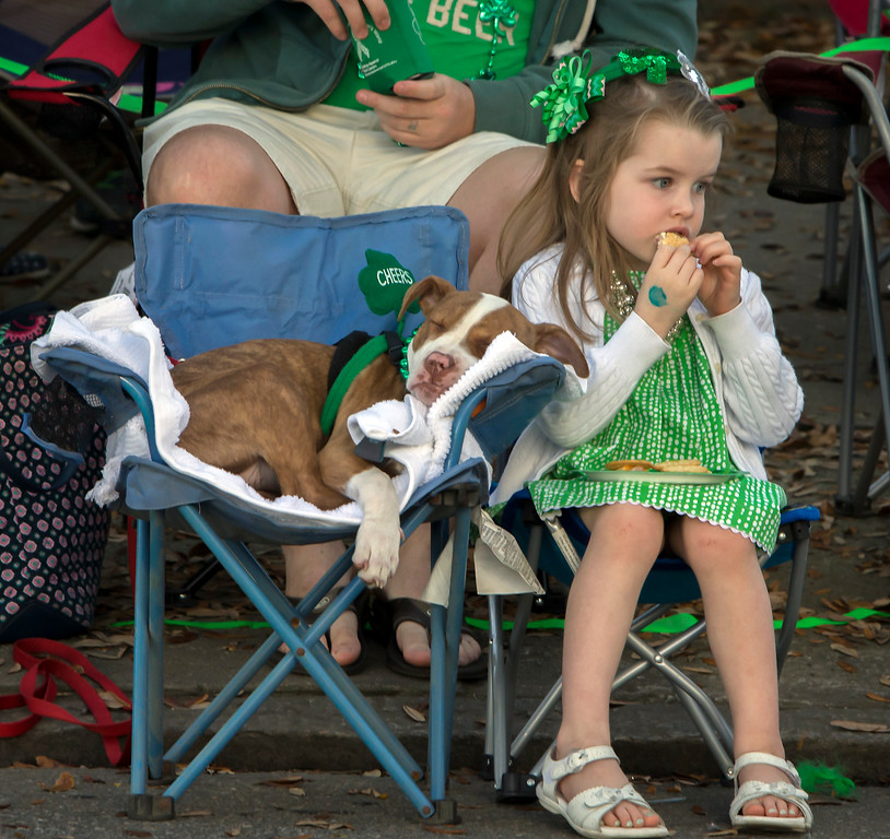. Mary Kate Ninness, 4, of Marietta, Ga. eats a cookie next to her 4-month-old puppy Athena during the 191st St. Patrick\'s Day parade, Tuesday, March 17, 2015, in Savannah, Ga. Organizers have long billed the Savannah St. Patrick\'s Day parade as the nation\'s second largest based on the size of the procession, rather than the number of people watching. (AP Photo/Stephen B. Morton)