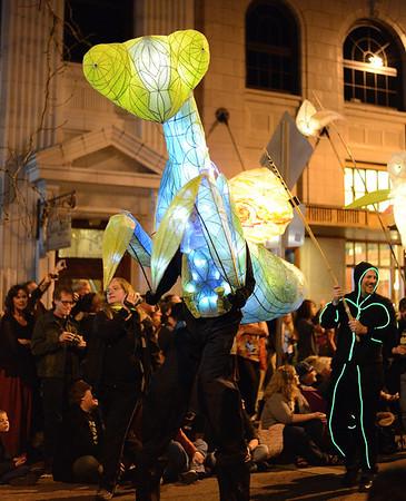 Luminary Procession