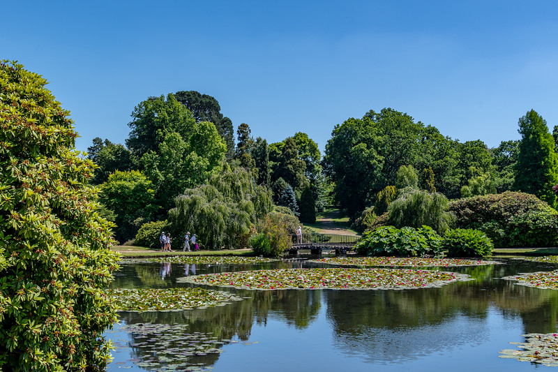Sheffield Park Gardens (17 of 172).jpg