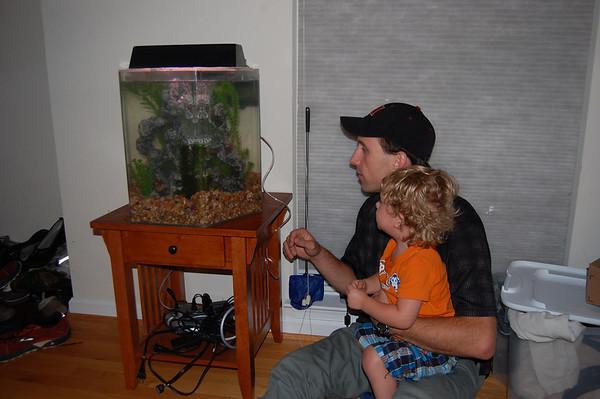 2009 - Goldfish Arrive