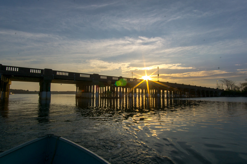 20170518-2017-05-18 Bass River  -1856.jpg