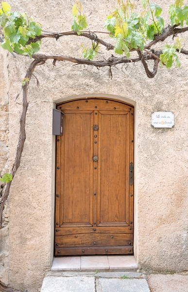 Grape Vine Doorway