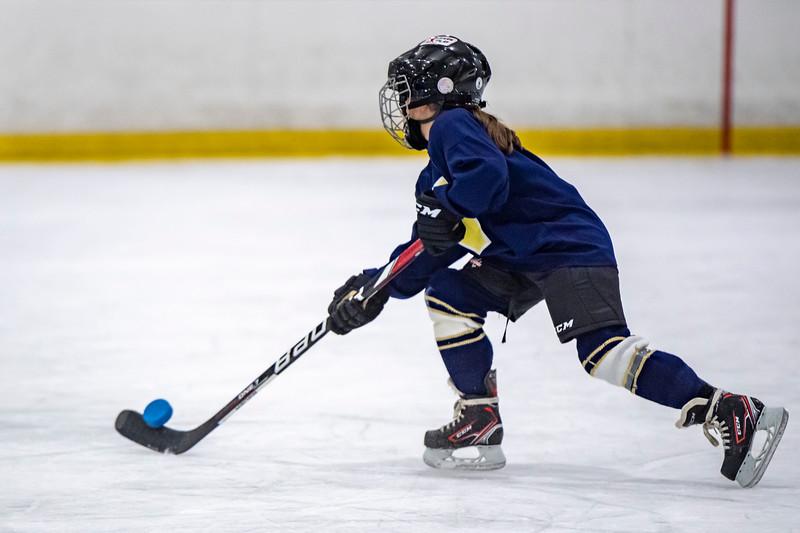 2019-02-04-Ryan-Naughton-Hockey-113.jpg