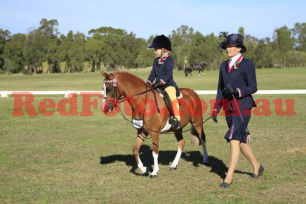 2011 05 29 Show Horse Council Classic Debutante Show Lead Rein and Miscellaneous