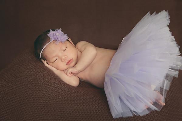 Lana Newborn Portraits