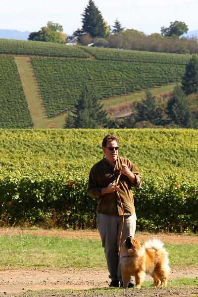 An Autumn drive during grape harvest , October 17, 2010