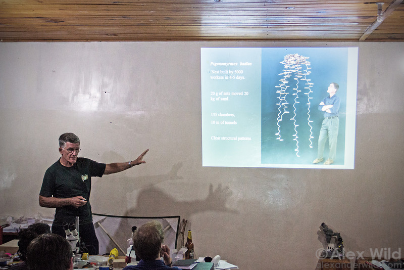 Walter Tschinkel explains the science behind his famous ant nest casts. The image in the slide is an iconic portrait of Tschinkel taken by photographer Charles Badland.  Ant Course 2012, Uganda