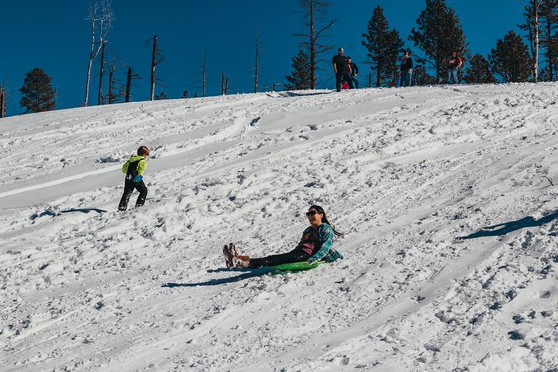 snowMLK-2503.jpg