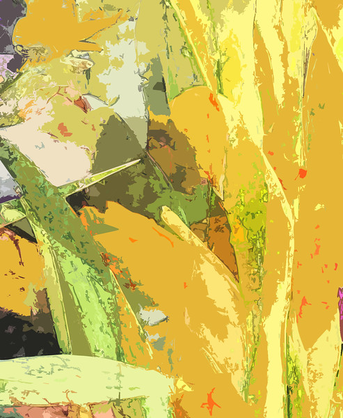 Yellow gladiolas abstract