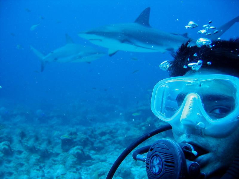 080324, LU with Shark.jpg