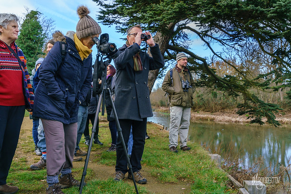 WRENS Conservation Group