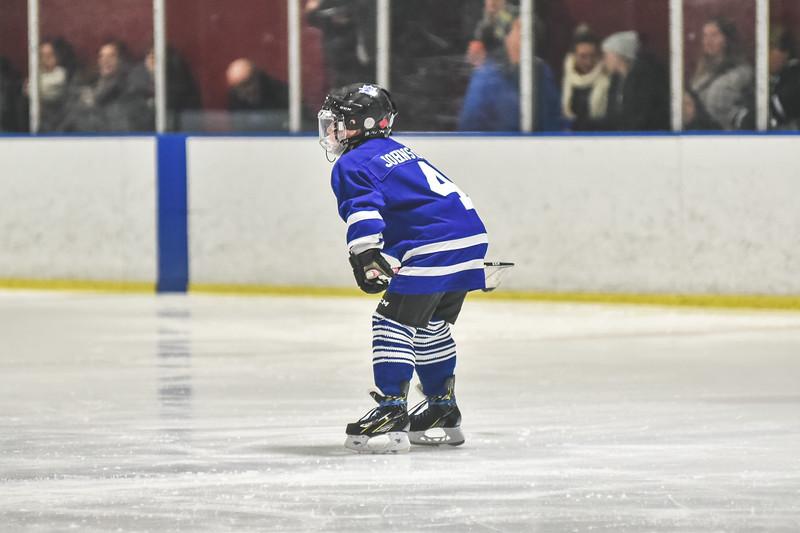 Leafs-8.jpg