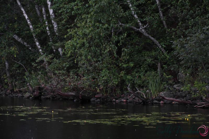 rainy day on Colby LakeIMG_2321.JPG