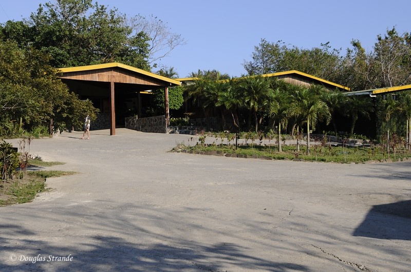 Guanacast:  Buena Vista Lodge
